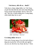 Trái cherry, đắt xắt ra… thuốc?