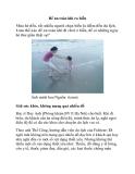 Để an toàn khi ra biển