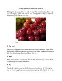 21 thực phẩm giảm cân cực an toàn