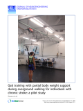 "Báo cáo khoa hoc:""  Gait training with partial body weight support during overground walking for individuals with chronic stroke: a pilot study"""