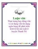 """Luận văn """"Thực trạng huy động vốn và sử dụng vốn tín dụng ngân hàng để phát triển kinh tế hộ sản xuất ở huyện Thanh Trì"""""""