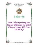 Đề án tốt nghiệp: Phát triển thị trường tiêu thụ sản phẩm của chi nhánh Công ty Lelong Việt Nam tại Hà Nội