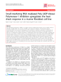 "Báo cáo y học: "" Small interfering RNA mediated Poly (ADP-ribose) Polymerase-1 inhibition upregulates the heat shock response in a murine fibroblast cell line."""