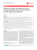 """Báo cáo y học: """"Endotoxin-activated microglia injure brain derived endothelial cells via NF-B, JAK-STAT and JNK stress kinase pathways"""""""