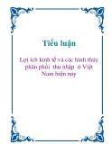 Tiểu luận: Lợi ích kinh tế và các hình thức phân phối  thu nhập  ở Việt Nam hiện nay