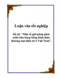 Luận văn tốt nghiệp: Một số giải pháp phát triển bán hàng bằng hình thức thương mại điện tử ở Việt Nam