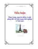 Tiểu luận: Thực trạng, nguyên nhân và giải pháp đối với tình trạng thất nghiệp ở Việt nam