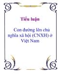 Tiểu luận: Con đường lên chủ nghĩa xã hội (CNXH) ở Việt Nam