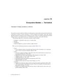 Ecological Modeling in Risk Assessment - Chapter 10
