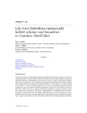 Lake Trout Ecosystems in a Changing Environment - Chapter 6