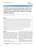 "báo cáo khoa học: "" The NAC domain-containing protein, GmNAC6, is a downstream component of the ER stress- and osmotic stress-induced NRP-mediated cell-death signaling pathway"""