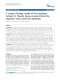 "báo cáo khoa học: ""  A systems biology model of the regulatory network in Populus leaves reveals interacting regulators and conserved regulation"""