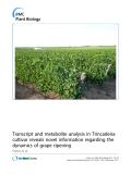 Báo cáo khoa học: Transcript and metabolite analysis in Trincadeira cultivar reveals novel information regarding the dynamics of grape ripening