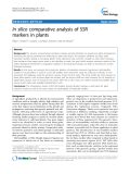 """báo cáo khoa học: """" In silico comparative analysis of SSR markers in plants"""""""