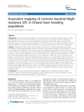 """báo cáo khoa học: """"  Association mapping of common bacterial blight resistance QTL in Ontario bean breeding populations"""""""