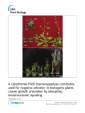 """báo cáo khoa học: """" A cytochrome P450 monooxygenase commonly used for negative selection in transgenic plants causes growth anomalies by disrupting brassinosteroid signaling"""""""