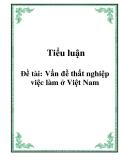 Tiểu luận: Vấn đề thất nghiệp việc làm ở Việt Nam