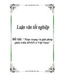 Luận văn tốt nghiệp: Thực trạng và giải pháp phát triển DNNN ở Việt Nam