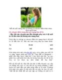 Ưu nhược điểm từng độ tuổi mang thai (P.2)