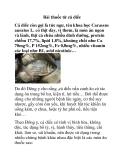 Bài thuốc từ cá diếc