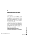 FUNGI IN ECOSYSTEM PROCESSES - CHAPTER 6