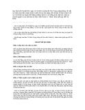 Quy định số 256-QĐ/TW, ngayf16/9/2009