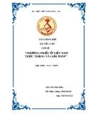 Đề tài: Thương phiếu ở Việt Nam thực trạng và giải pháp