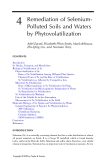 Phytoremediation of Contaminated Soil and Water - Chapter 4