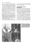 Vascular Surgery - part 2