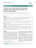 "Báo cáo y học: "" A pattern of cerebral perfusion anomalies between Major Depressive Disorder and Hashimoto Thyroiditis"""