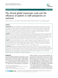 "Báo cáo y học: "" The clinical global impression scale and the influence of patient or staff perspective on outcome"""