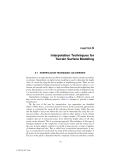 Digital Terrain Modeling: Principles and Methodology - Chapter 6