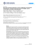 """Báo cáo y học: """"Pancreatic and psoas abscesses as a late complication of intravesical administration of bacillus Calmette-Guerin for bladder cancer: a case report and review of the literature"""""""