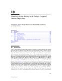 HANDBOOK OF SCALING METHODS IN AQUATIC ECOLOGY MEASUREMENT, ANALYSIS, SIMULATION - PART 3