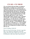 CÂY SEN - CÂY THUỐC