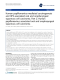 """báo cáo khoa học: """"  Human papillomavirus-mediated carcinogenesis and HPV-associated oral and oropharyngeal squamous cell carcinoma. Part 2: Human papillomavirus associated oral and oropharyngeal squamous cell carcinoma"""""""