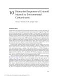 Freshwater Bivalve Ecotoxoicology - Chapter 10