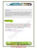 kỳ 1: ebook 1001 bài viết người mới học cần xem_phần 6