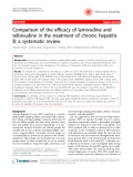"""Báo cáo y học: """" Comparison of the efficacy of lamivudine and telbivudine in the treatment of chronic hepatitis B: a systematic review"""""""