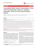 """Báo cáo y học: """"Transcription phase, protein characteristics of DEV UL45 and prokaryotic expression, antibody preparation of the UL45 des-transmembrane domain"""""""
