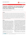 """Báo cáo y học: """"Production, purification and characterization of polyclonal antibody against the truncated gK of the duck enteritis virus"""""""