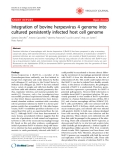 "Báo cáo y học: "" Integration of bovine herpesvirus 4 genome into cultured persistently infected host cell genome"