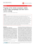 """Báo cáo y học: """" T4 genes in the marine ecosystem: studies of the T4-like cyanophages and their role in marine ecology"""""""