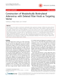 "Báo cáo y học: "" Construction of Metabolically Biotinylated Adenovirus with Deleted Fiber Knob as Targeting Vector"""