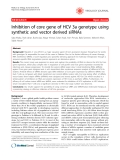 """Báo cáo y học: """"Inhibition of core gene of HCV 3a genotype using synthetic and vector derived siRNAs"""""""