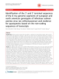 "Báo cáo y học: ""Identification of the 3' and 5' terminal sequences of the 8 rna genome segments of european and north american genotypes of infectious salmon anemia virus (an orthomyxovirus) and evidence for quasispecies based on the non-coding sequences of transcripts"""