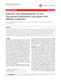 """Báo cáo y học: """"Detection and characterization of two chimpanzee polyomavirus genotypes from different subspecies"""""""