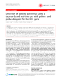 """Báo cáo y học: """" Detection of porcine parvovirus using a taqman-based real-time pcr with primers and probe designed for the NS1 gene"""""""