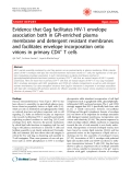 "Báo cáo y học: ""Evidence that Gag facilitates HIV-1 envelope association both in GPI-enriched plasma membrane and detergent resistant membranes and facilitates envelope incorporation onto virions in primary CD4+ T cells"""