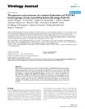 "Báo cáo khoa học: "" The genome and proteome of a virulent Escherichia coli O157:H7 bacteriophage closely resembling Salmonella phage Felix O1"""